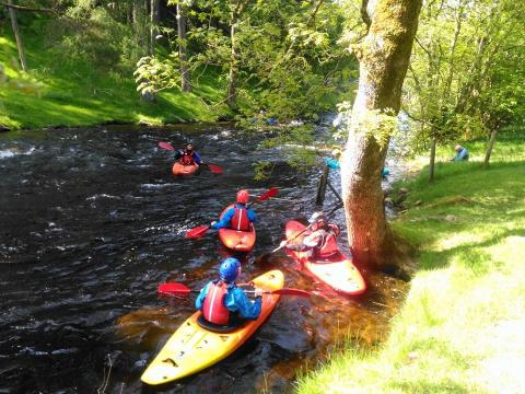 Paddles on the Tryweryn